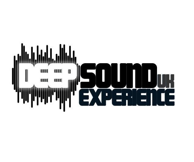 DSE Logo edited bww